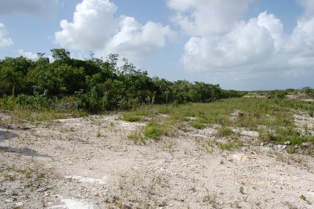 4. Terreno por un Venta en Affordable lot in San Salvador - MLS 32439 Columbus Landings, San Salvador, Bahamas
