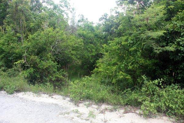 3. Terreno por un Venta en Close to Nature, Close to Town. Have it both ways, Great Cistern, Abaco MLS 19032 Marsh Harbour, Abaco, Bahamas