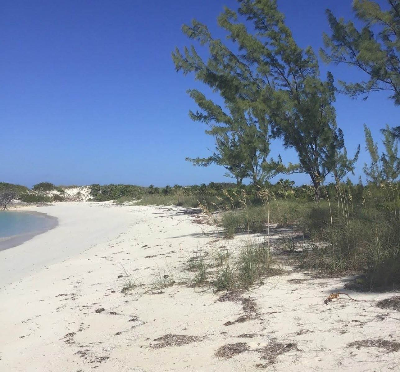 4. Land for Sale at Beachfront Estate at Polaris Bay - MLS 43342 San Salvador, Bahamas