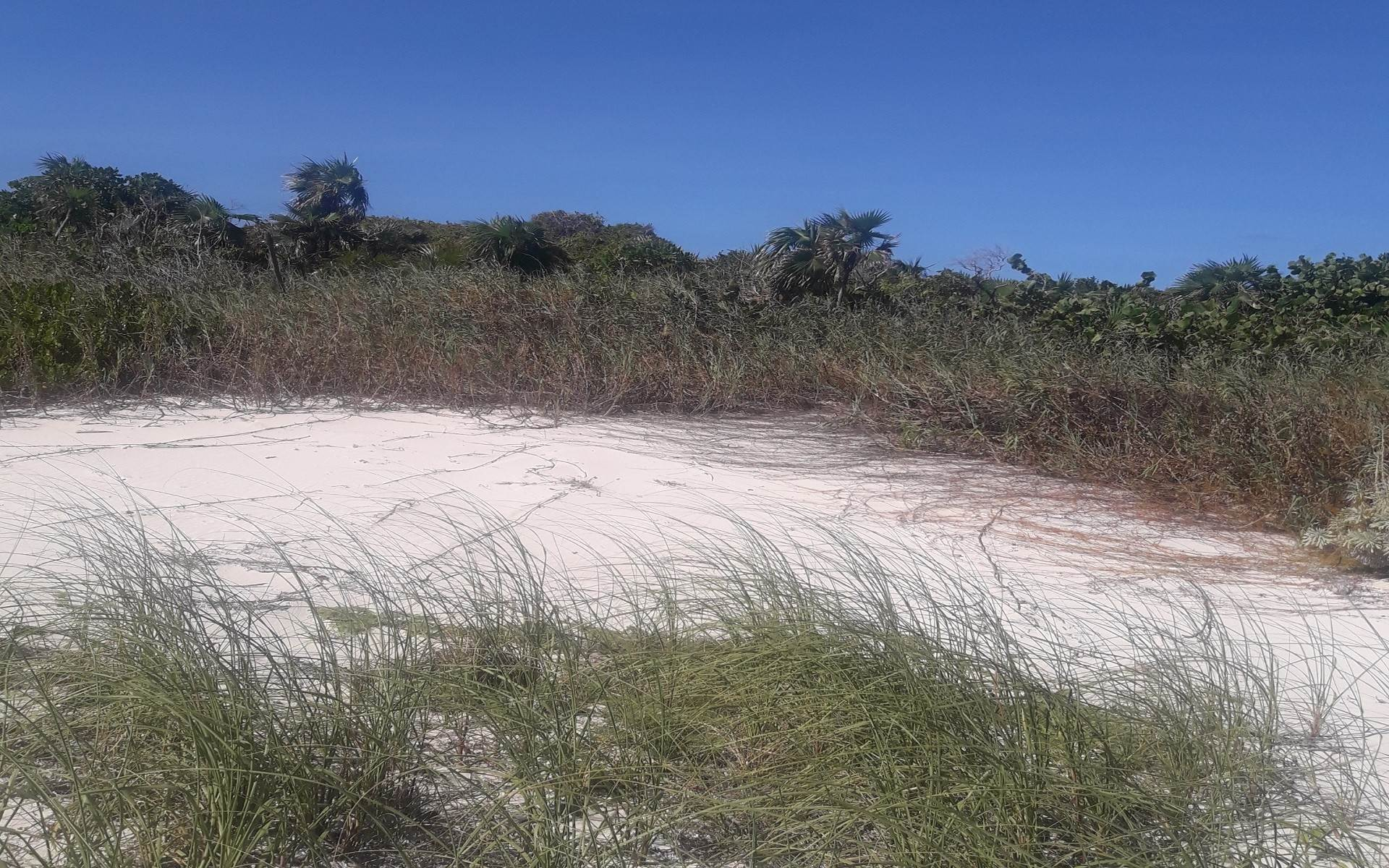 4. Land for Sale at Affordable Ocean Front Multi-Family lot on San Salvador - MLS 43101 Columbus Landings, San Salvador, Bahamas