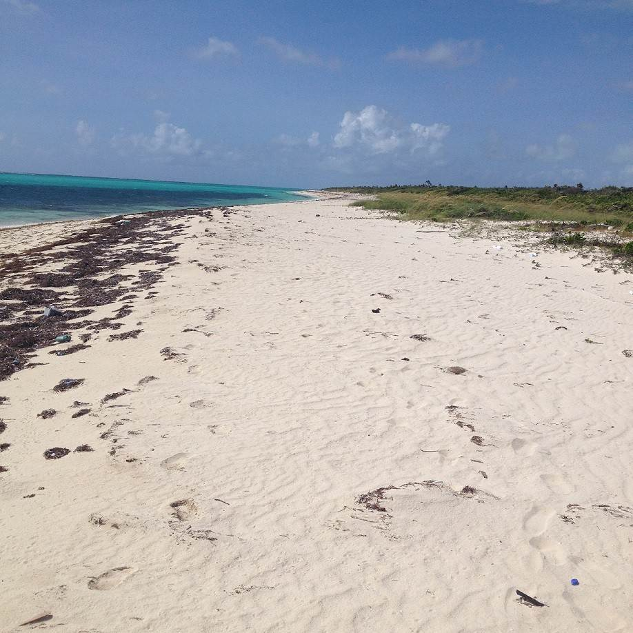 4. Land for Sale at Huge Lot near Amazing Beach on Lovely Acklins Island - MLS 38112 Acklins Island, Bahamas