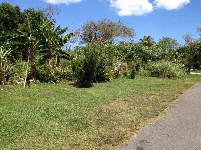 4. Land for Sale at Acreage at South Hillside Estate Nassau And Paradise Island, Bahamas