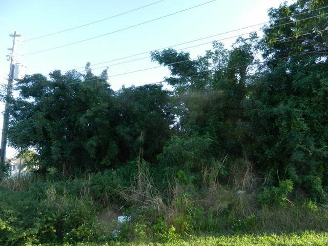 4. Terreno por un Venta en Well located residential lot in Coral Lakes Coral Harbour, Nueva Providencia / Nassau, Bahamas