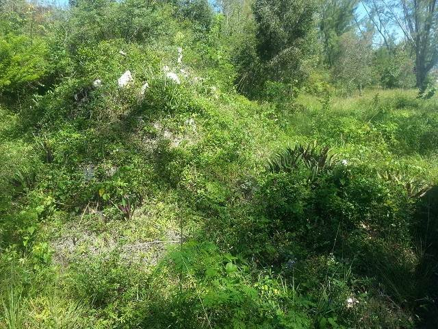 4. Land for Sale at Great lot for a starter home Coral Harbour, Nassau And Paradise Island, Bahamas