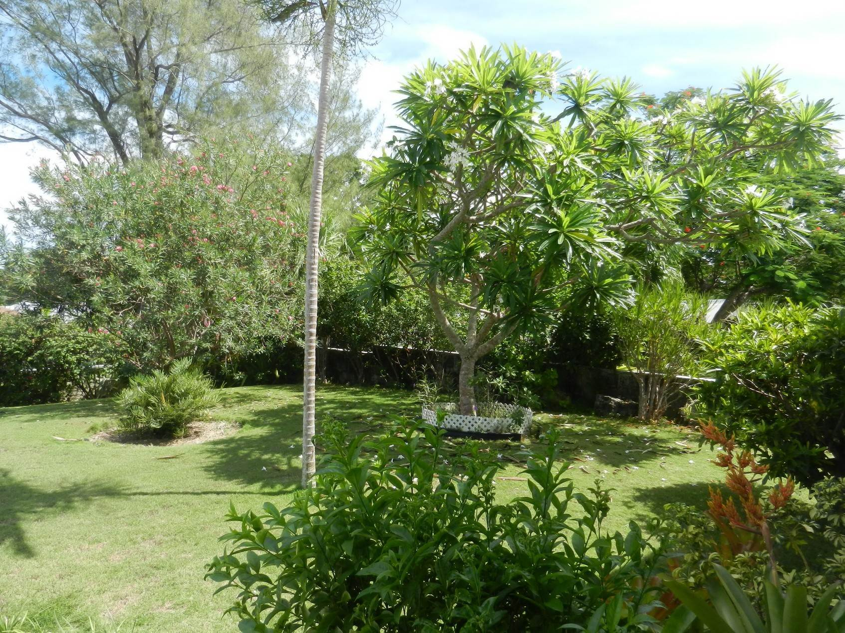 5. Single Family Homes por un Alquiler en Lovely Family Home with Large Garden, Pool and back-up Generator - MLS 39185 Eastern Road, Nueva Providencia / Nassau, Bahamas