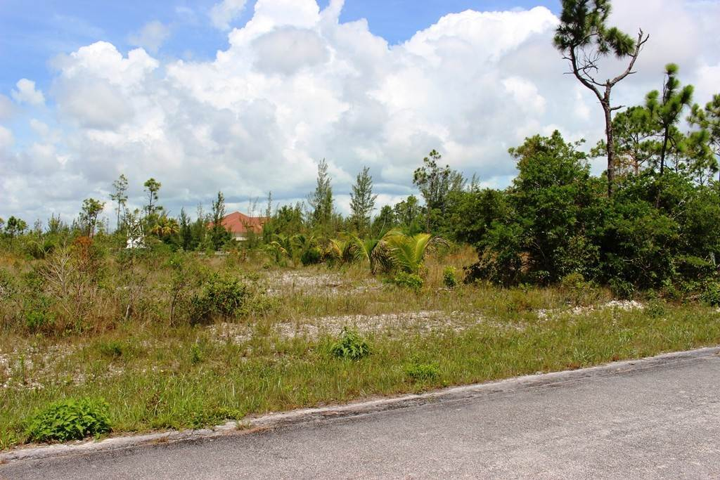 4. Land for Sale at Awesome Lot in Pine Bay Pine Bay, Freeport And Grand Bahama, Bahamas