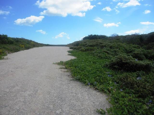 2. Land for Sale at A Rare Find Long Island, Bahamas