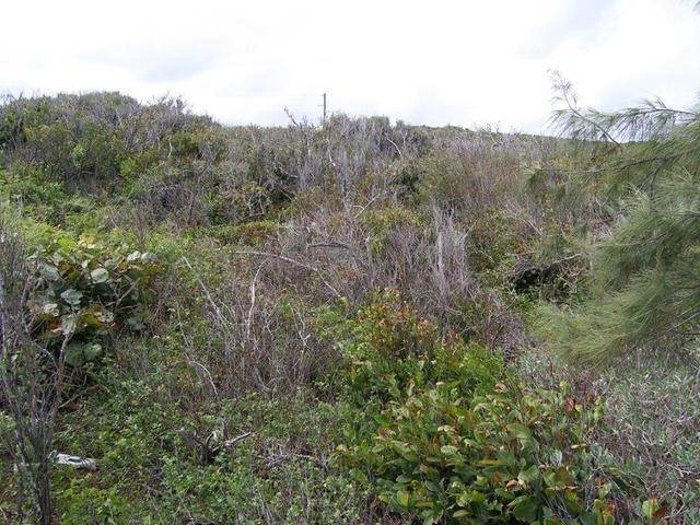 5. Land for Sale at Breezes Away Estates, Eleuthera, The Bahamas Governors Harbour, Eleuthera, Bahamas