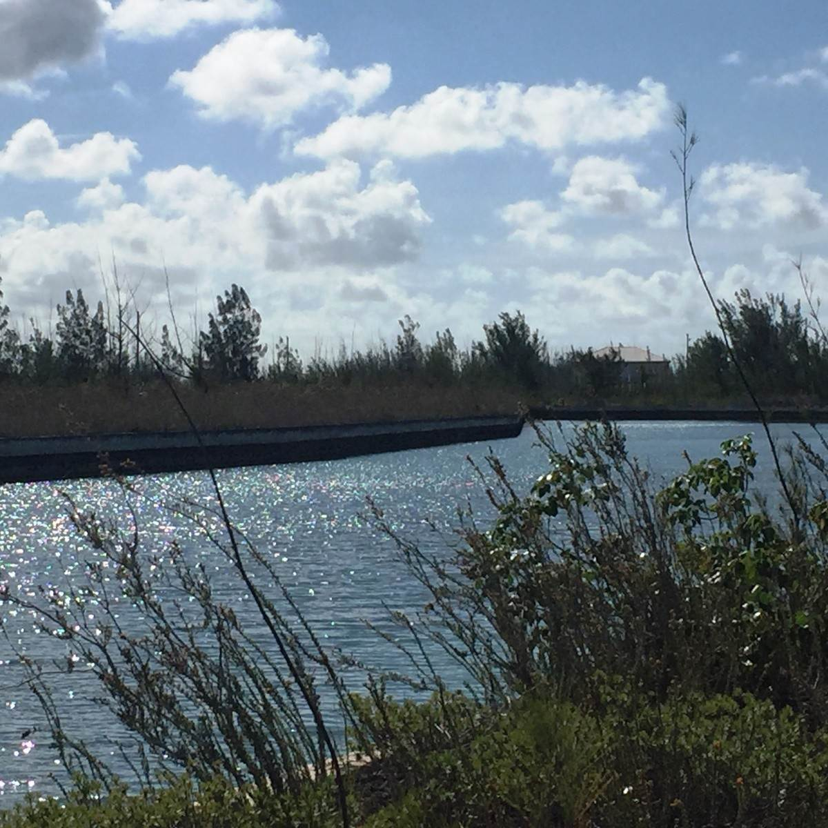3. Land for Sale at Affordable Canal Lot - MLS #34735 Dover Sound, Freeport And Grand Bahama, Bahamas