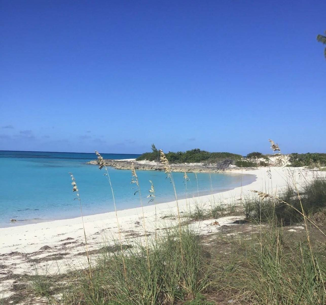 5. Land for Sale at Beachfront Estate at Polaris Bay - MLS 43342 San Salvador, Bahamas