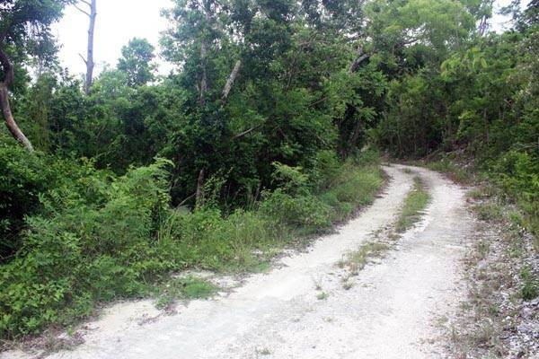 4. Terreno por un Venta en Close to Nature, Close to Town. Have it both ways, Great Cistern, Abaco MLS 19032 Marsh Harbour, Abaco, Bahamas