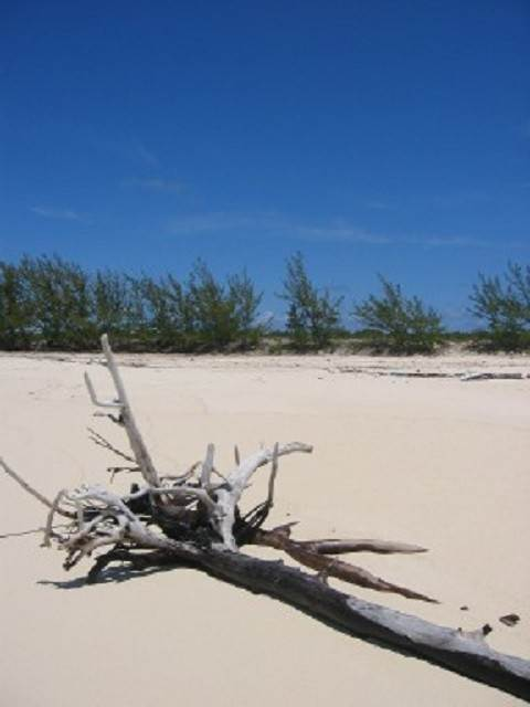 3. Land for Sale at Large Oceanfront Lot Rum Cay, Bahamas