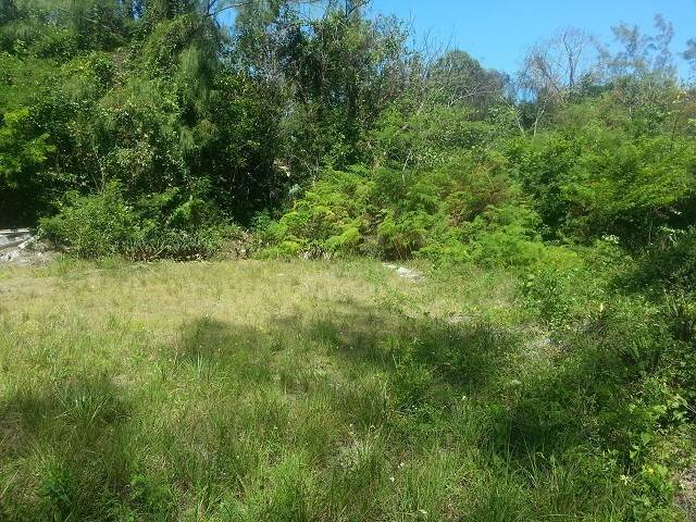 6. Land for Sale at Great lot for a starter home Coral Harbour, Nassau And Paradise Island, Bahamas