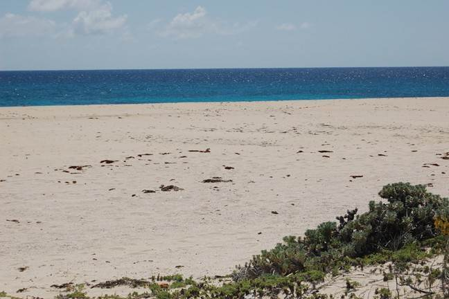 3. Terreno por un Venta en Spacious and Affordable Lots in San Salvador Columbus Landings, San Salvador, Bahamas