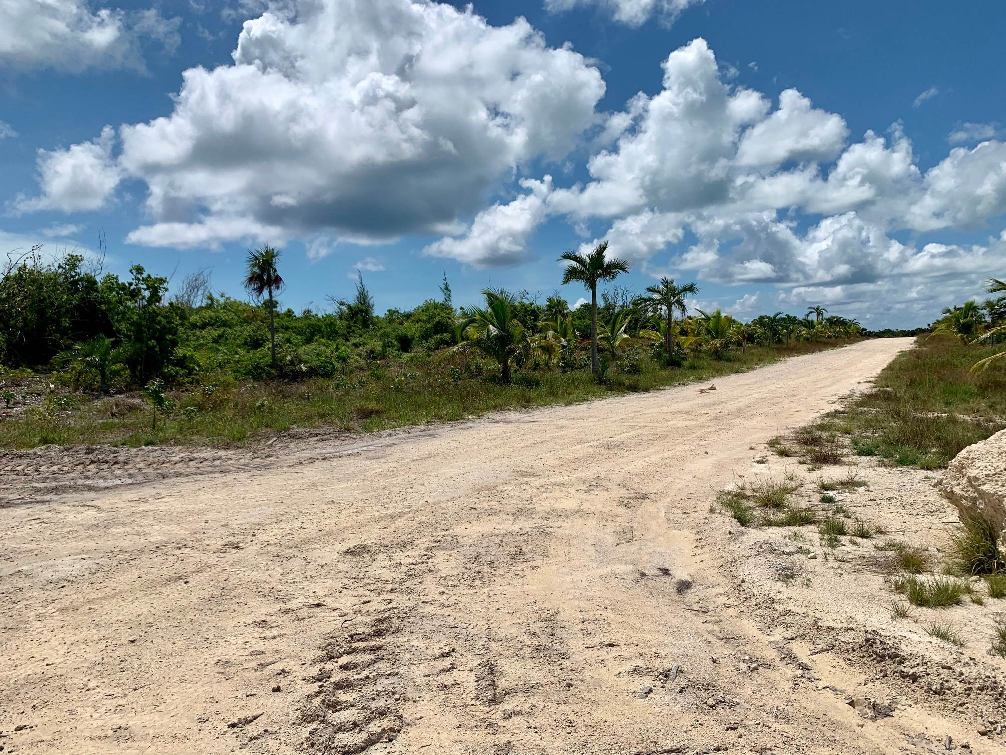 12. Land for Sale at Lot 29 Chub Cay - MLS 38796 Chub Cay, Berry Islands, Bahamas