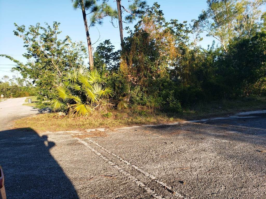 5. Land for Sale at Nicely Priced Duplex Lot in Fortune Point - MLS 36371 Fortune Point, Freeport And Grand Bahama, Bahamas