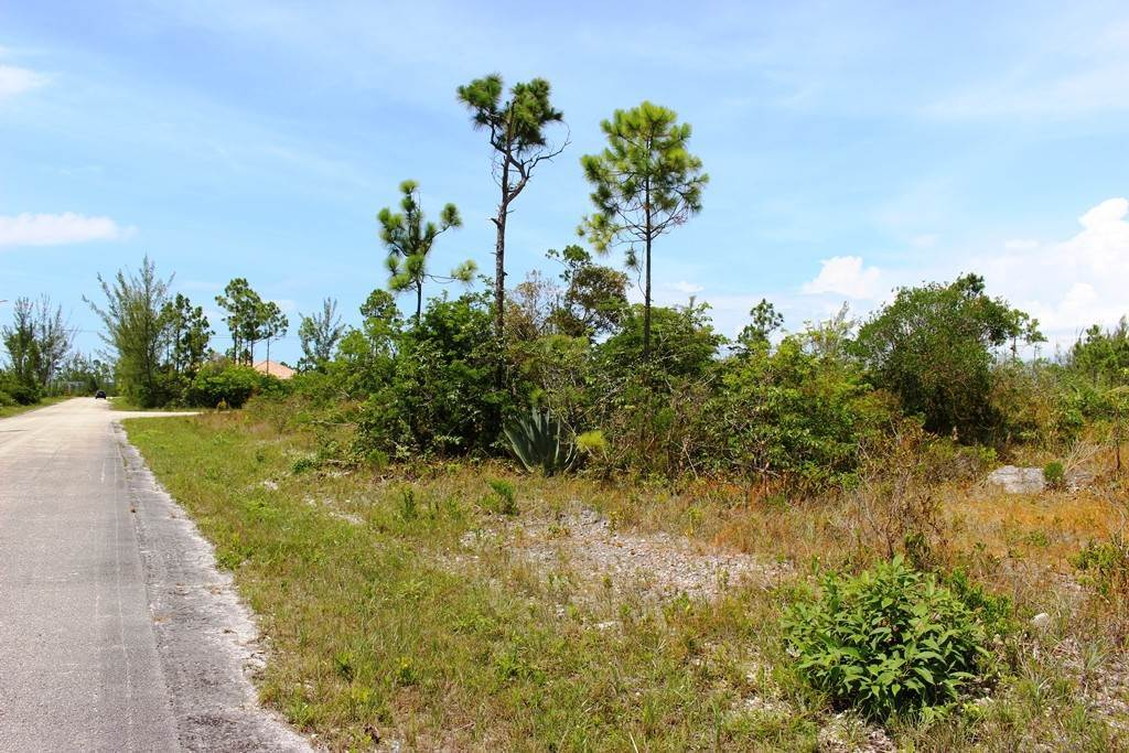 7. Land for Sale at Awesome Lot in Pine Bay Pine Bay, Freeport And Grand Bahama, Bahamas