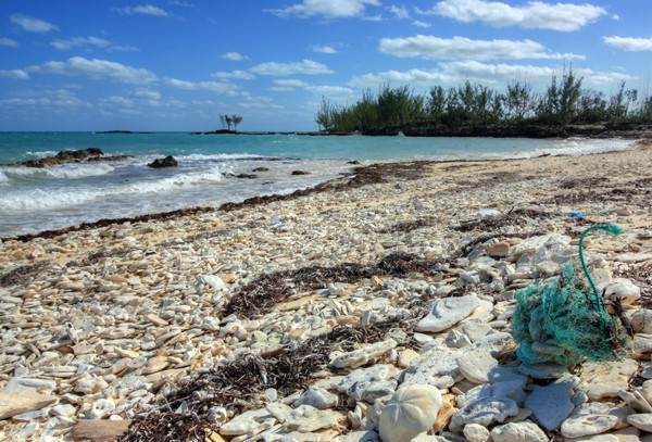8. Land for Sale at Unique Beachfront Parcel of 2.4 Acres (MLS17537) Turtle Rocks, Abaco, Bahamas