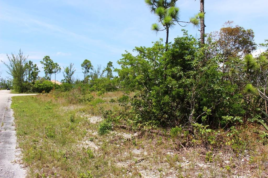 8. Land for Sale at Awesome Lot in Pine Bay Pine Bay, Freeport And Grand Bahama, Bahamas