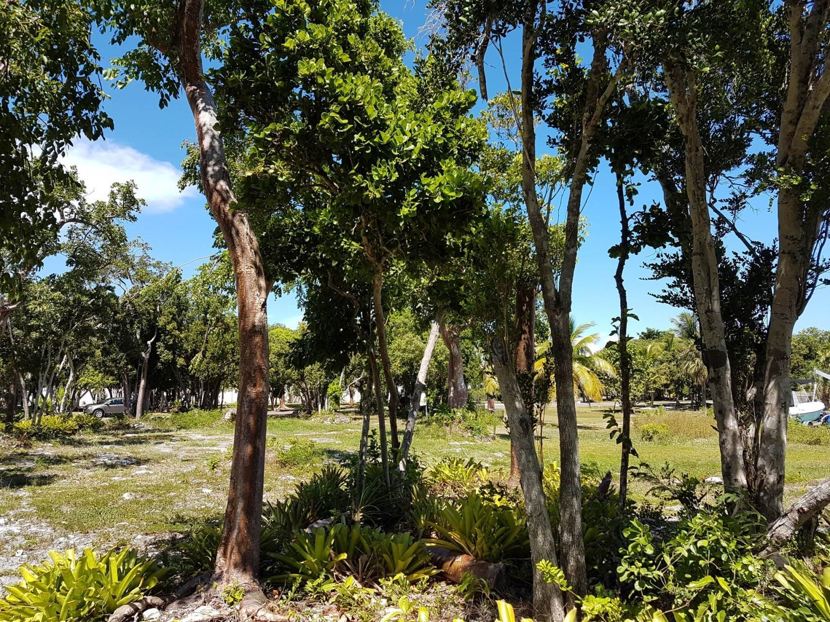 8. Land for Sale at Port New Providence Canal Front Lot Port New Providence, Yamacraw, Nassau And Paradise Island Bahamas