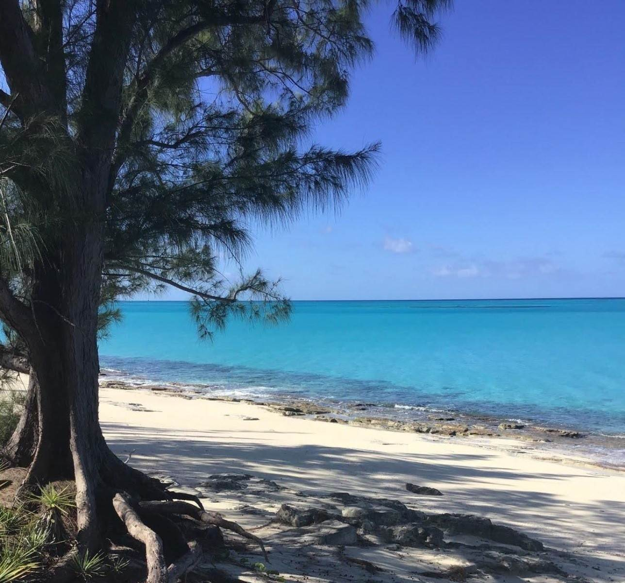 8. Land for Sale at Beachfront Estate at Polaris Bay - MLS 43342 San Salvador, Bahamas