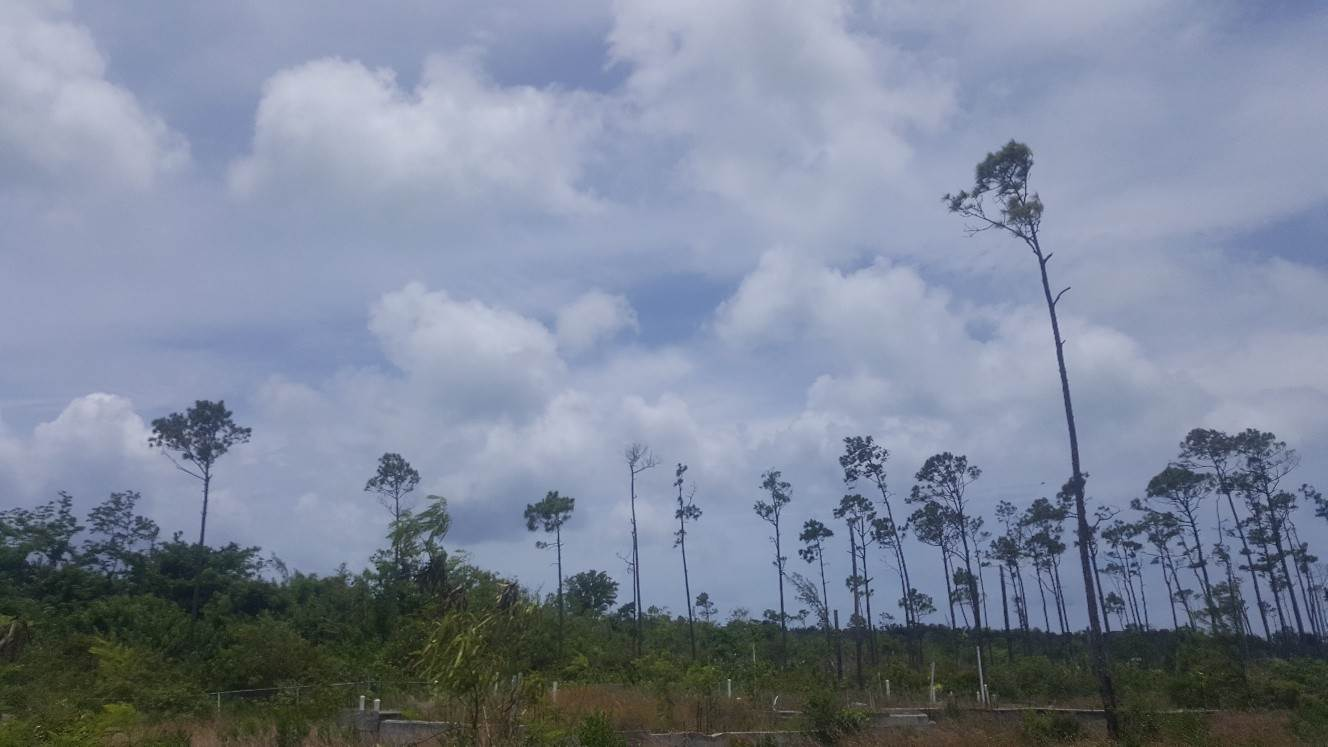 9. Land for Sale at South Ocean Duplex Lot with Foundation South Ocean, Nassau And Paradise Island, Bahamas