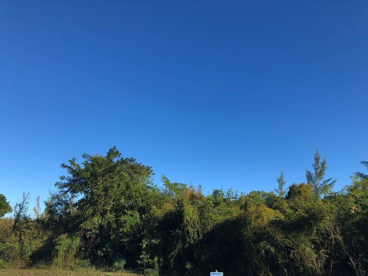 8. Land for Sale at Residential Lot 59 Oceanfront and Boating Community of Palm Cay - MLS 40164 Palm Cay, Yamacraw, Nassau And Paradise Island Bahamas