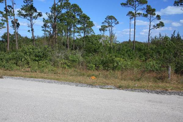 9. Land for Sale at Unique Beachfront Parcel of 2.4 Acres (MLS17537) Turtle Rocks, Abaco, Bahamas