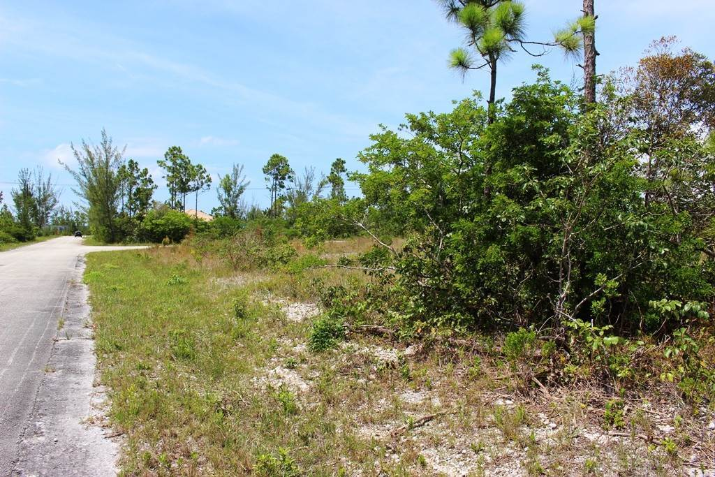 9. Land for Sale at Awesome Lot in Pine Bay Pine Bay, Freeport And Grand Bahama, Bahamas