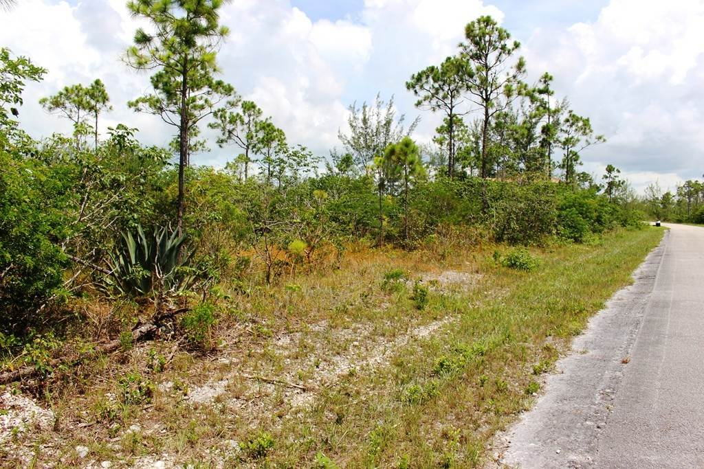 10. Land for Sale at Awesome Lot in Pine Bay Pine Bay, Freeport And Grand Bahama, Bahamas
