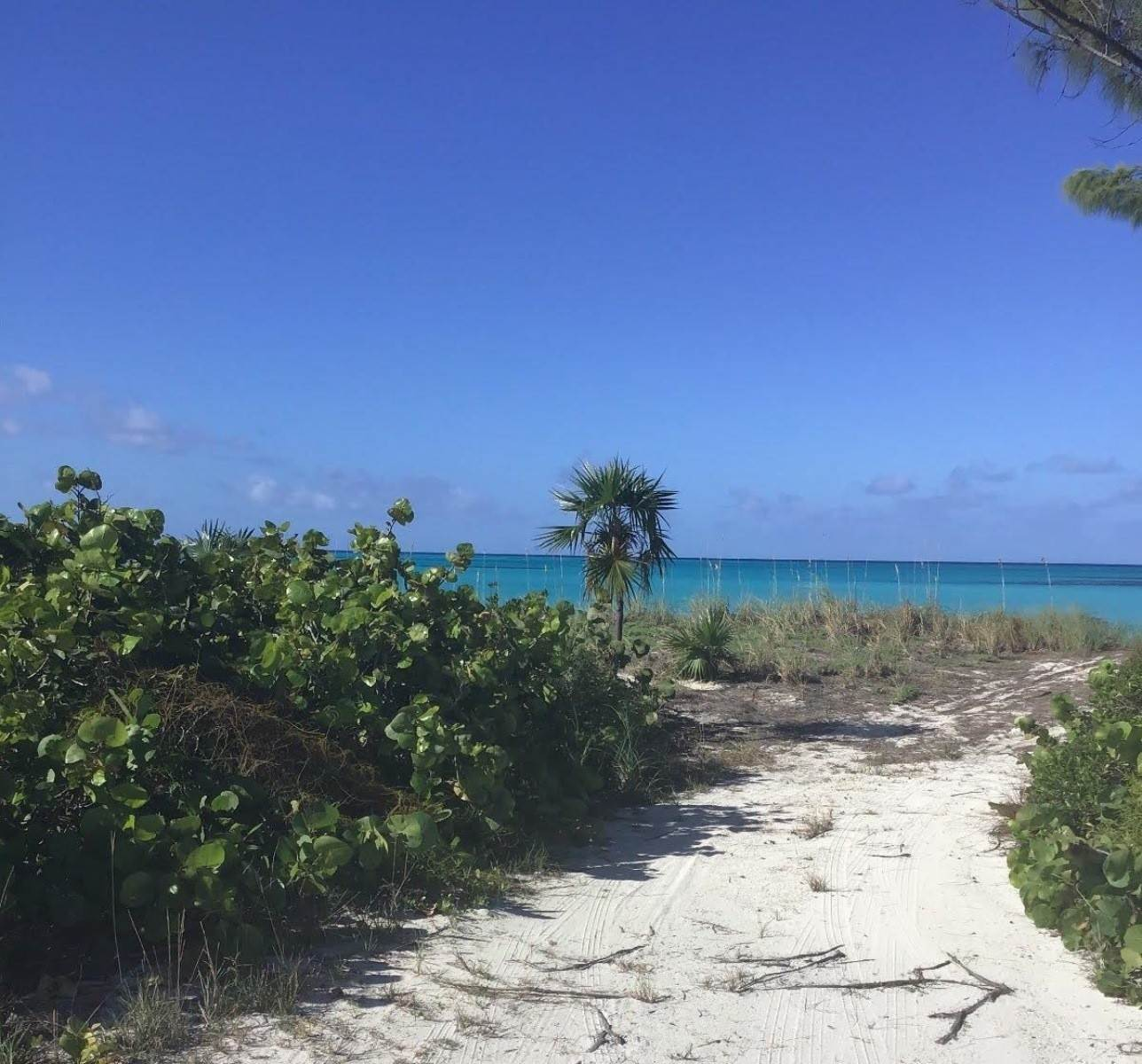 10. Land for Sale at Beachfront Estate at Polaris Bay - MLS 43342 San Salvador, Bahamas