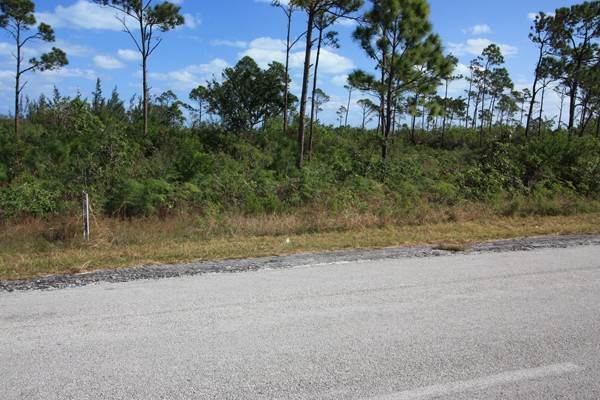 10. Land for Sale at Unique Beachfront Parcel of 2.4 Acres (MLS17537) Turtle Rocks, Abaco, Bahamas