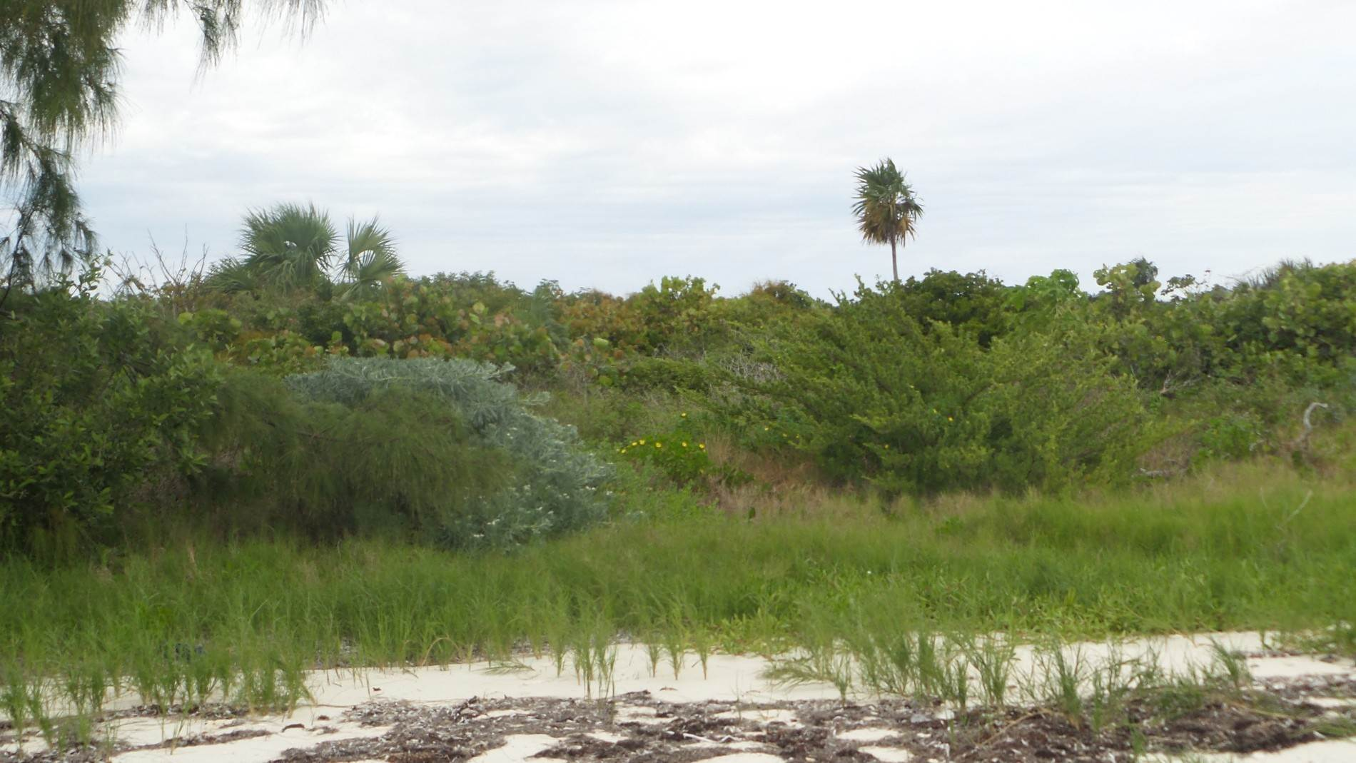 10. Private Islands por un Venta en Large Private Island in Abaco with approved development Plans - MLS 42074 Abaco, Bahamas