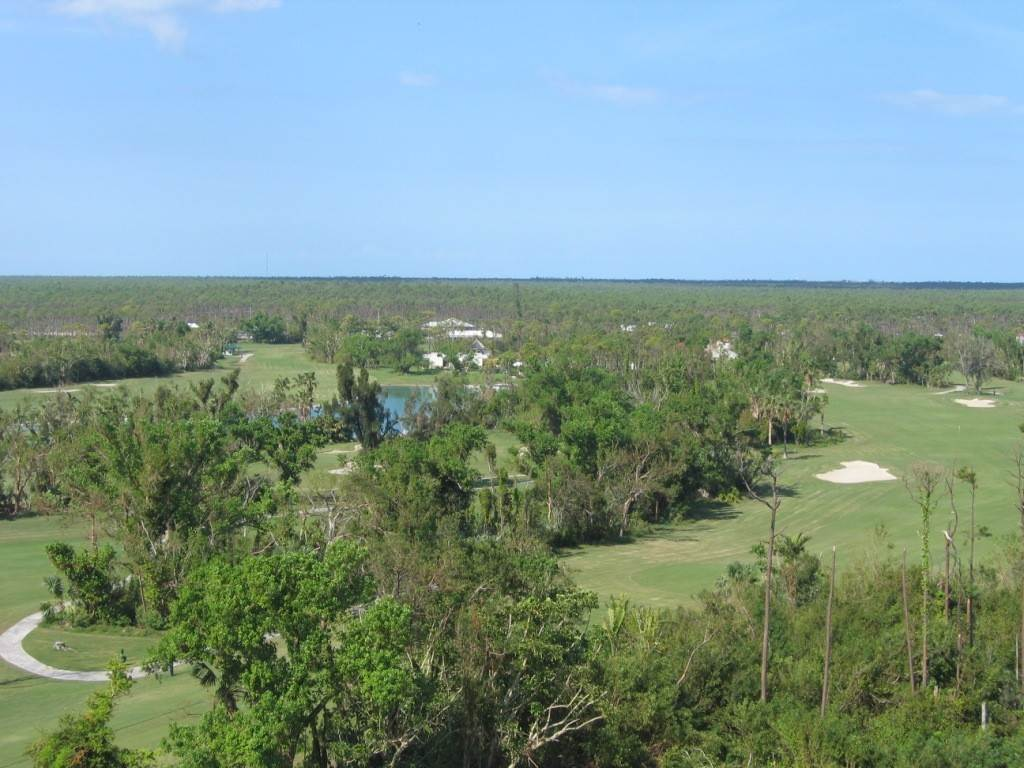 4. Co-op / Condominio por un Alquiler en Beautiful 8th Floor Condo Greening Glade, Gran Bahama Freeport, Bahamas